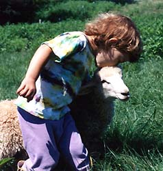 willa and mary the lamb