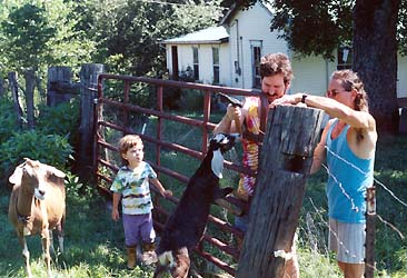 fixing the fence in tennessee with assistance from willa and goats